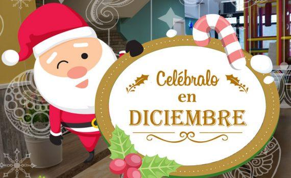Oferta Fiestas de Navidad Palmas Palmitas